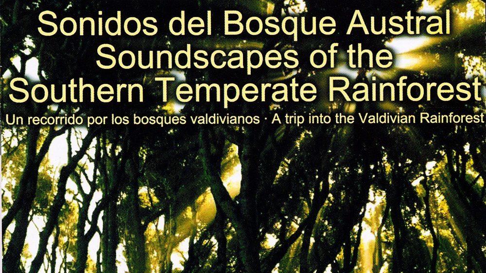 caratula cd bosque 2004-2005-imgdestacada